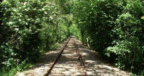 Les pistes cyclables en Vendée : des kilomètres de plaisir