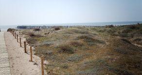 Saint Jean de Monts : sa plage, ses dunes, sa forêt